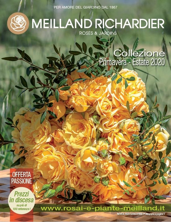 Catalogo Meilland Richardier Primavera / Estate 2020