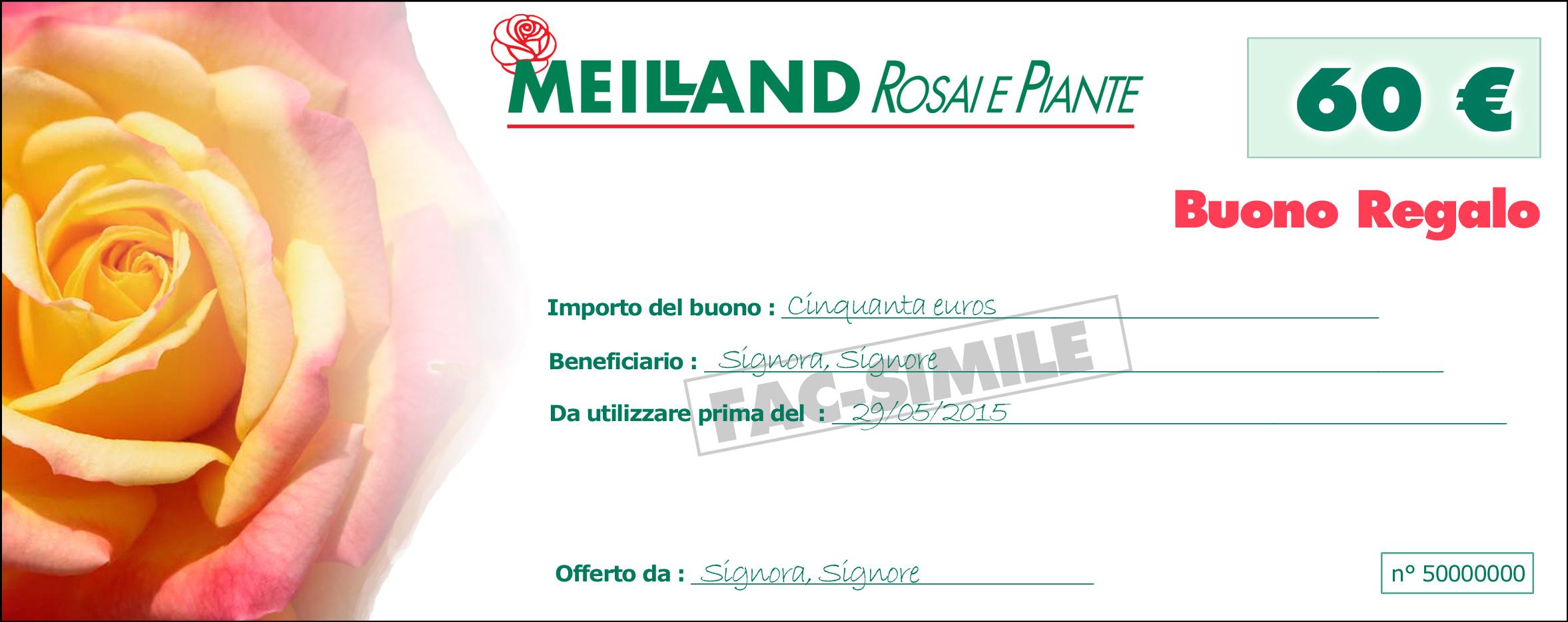 buono regalo rosai e piante meilland