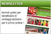 rosai e piante newsletter