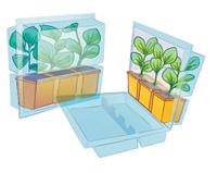 conservare piante con zolla, in vaso, contenitore