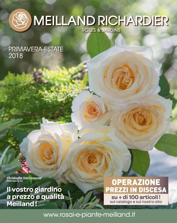 Primavera / Estate 2018 - PDF o Cartaceo